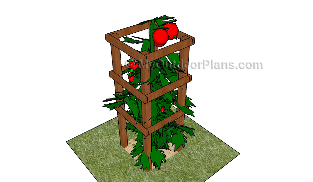 Tomato Cage Plans Myoutdoorplans Free Woodworking Plans And