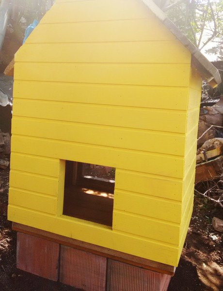 Painting-the-small-chicken-coop