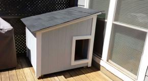 DIY Large Dog House