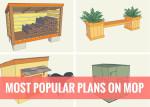 Most Popular Plans