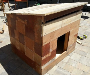 Building-a-large-dog-house