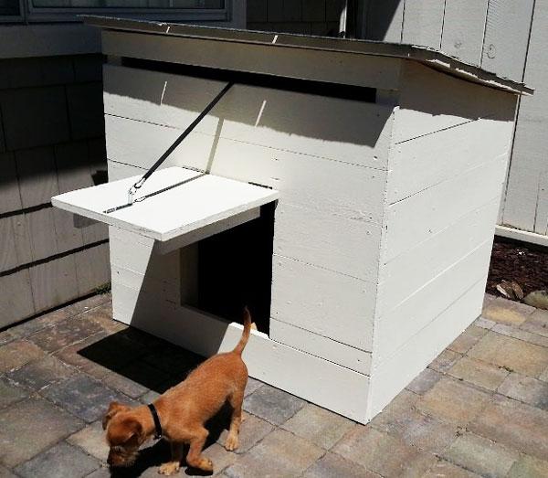 Diy Simple Dog House Myoutdoorplans Free Woodworking
