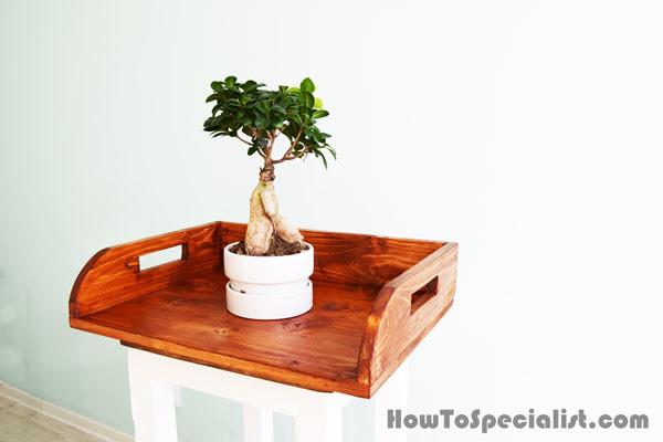 DIY-Wood-Potting-Tray