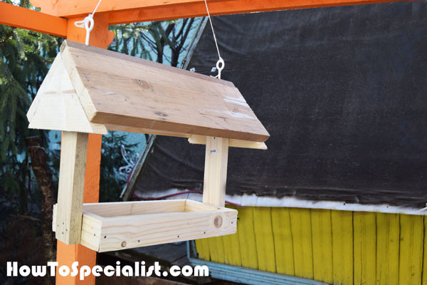 How-to-build-a-platform-bird-feeder