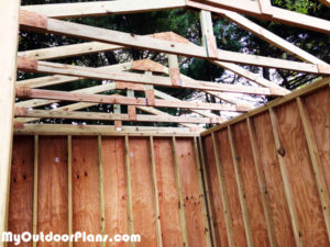 Building-the-rafters