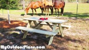 DIY-Large-Picnic-Table-Plans