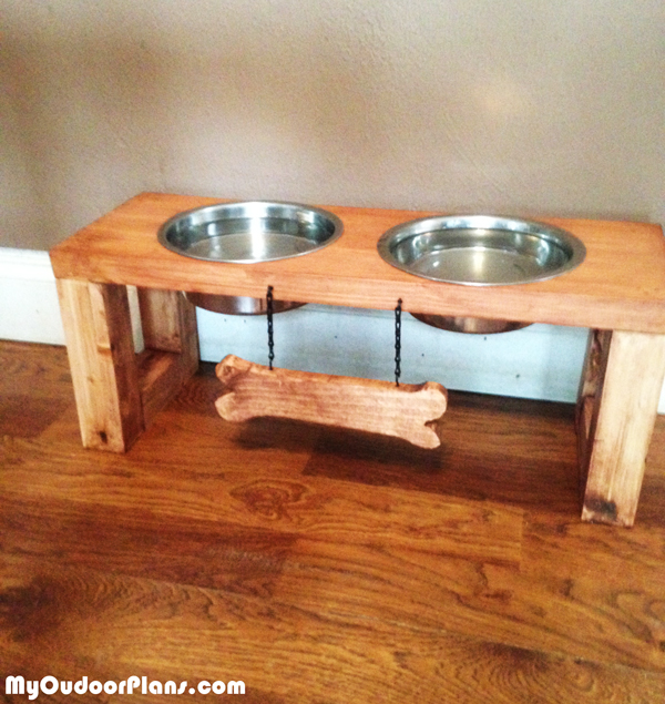 Dog-feeding-station