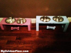 Boy-and-girl-doggie-trays