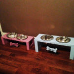 DIY Boy and Girl Doggie Trays
