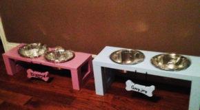 DIY Boy and Girl Doggie Trays
