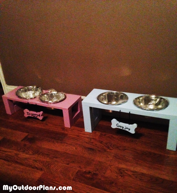 DIY-Boy-and-Girl-Doggie-Tray
