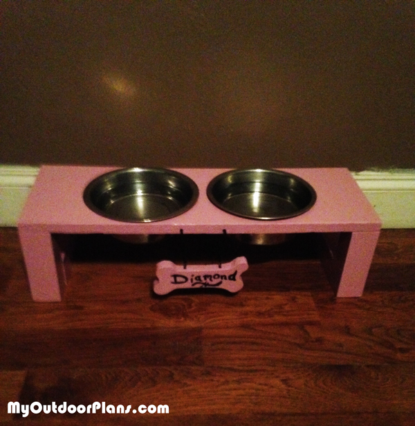 DIY-Boy-and-Girl-Doggie-Trays