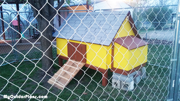 DIY Simple Chicken Coop