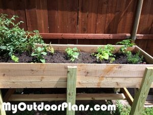Building-a-raised-garden-bed