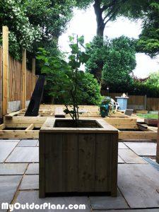 DIY-Tree-Planter