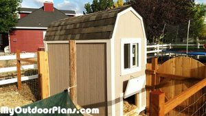 DIY-Barn-Chicken-Coop