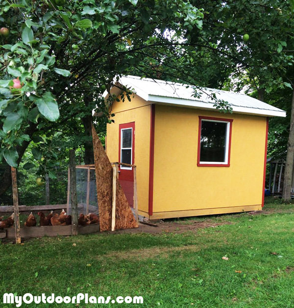 DIY Large Chicken Coop Plans