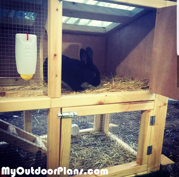 Building-a-wood-rabbit-cage
