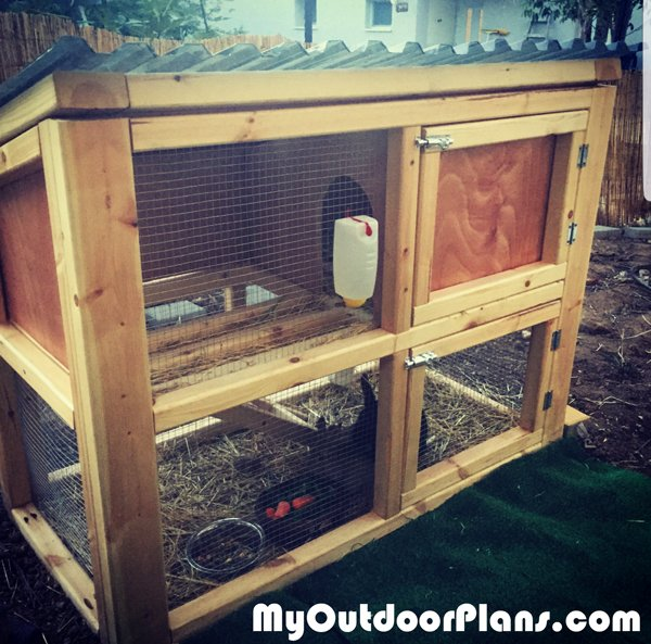 DIY Small Rabbit Hutch