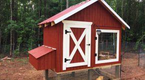 DIY 4×8 Chicken Coop