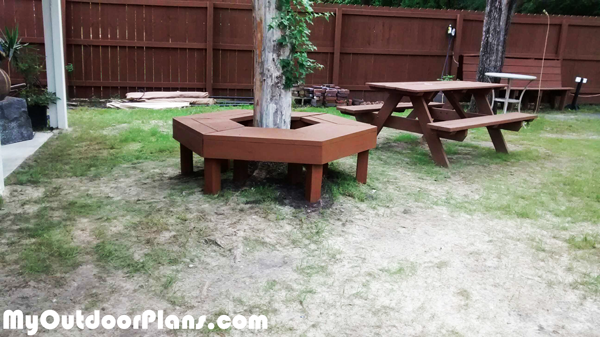DIY Tree Bench