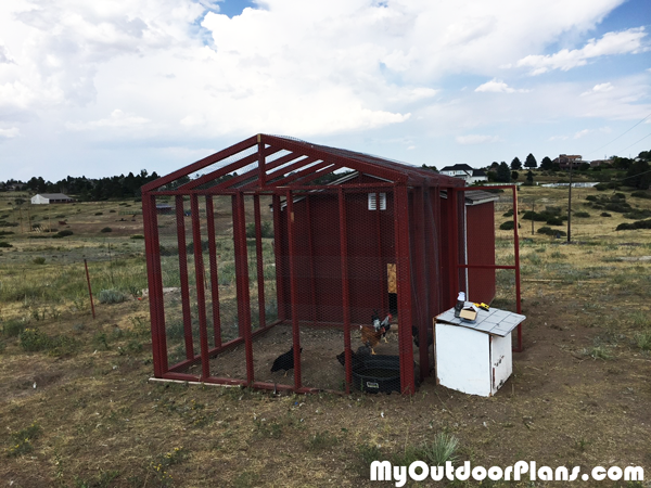 DIY 10x10 Chicken Run