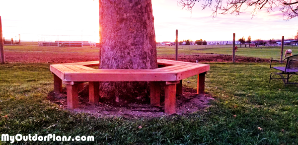 DIY-Bench-around-a-Tree