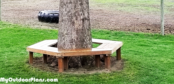 DIY Outdoor Bench around Sycamore Tree