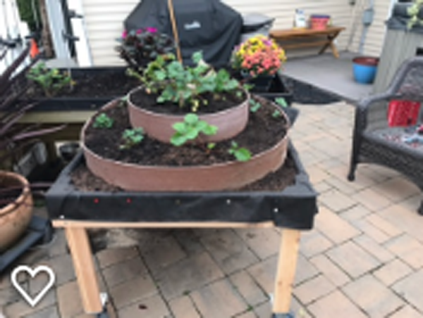 DIY Raised Strawberry Planter