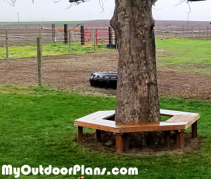 How-to-build-a-tree-bench