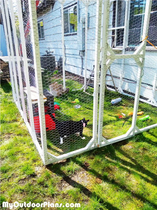 Assembling-the-catio