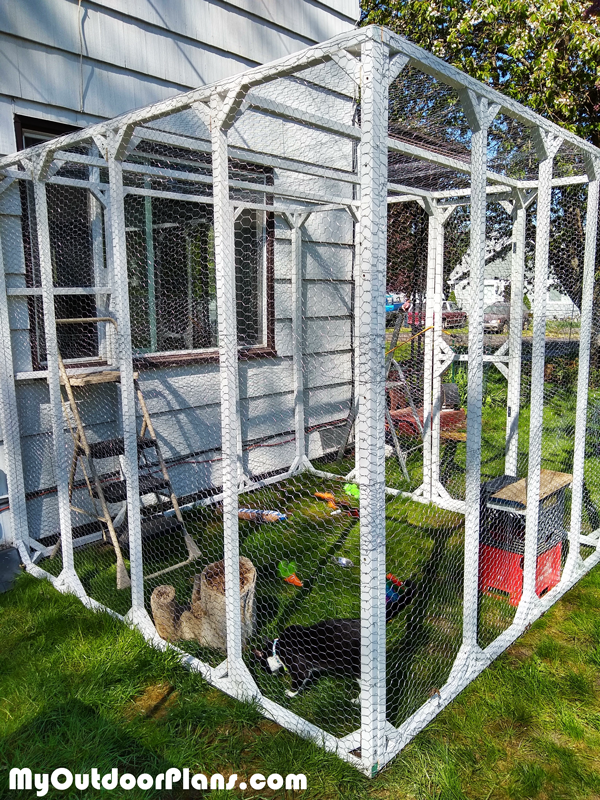 Building a Catio - DIY Project