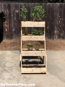 3-tier-Planter---DIY-Project