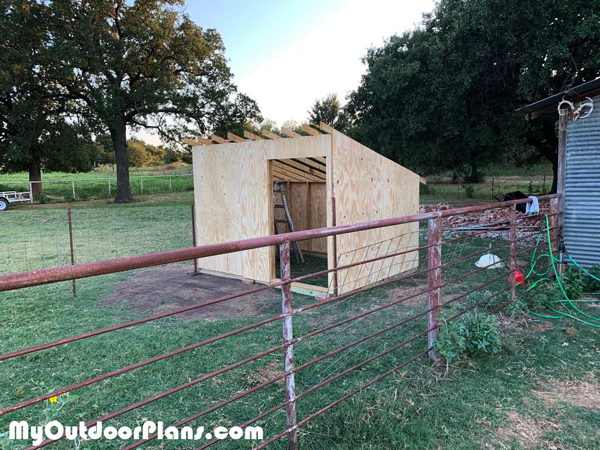 Goat Shelter - DIY Project