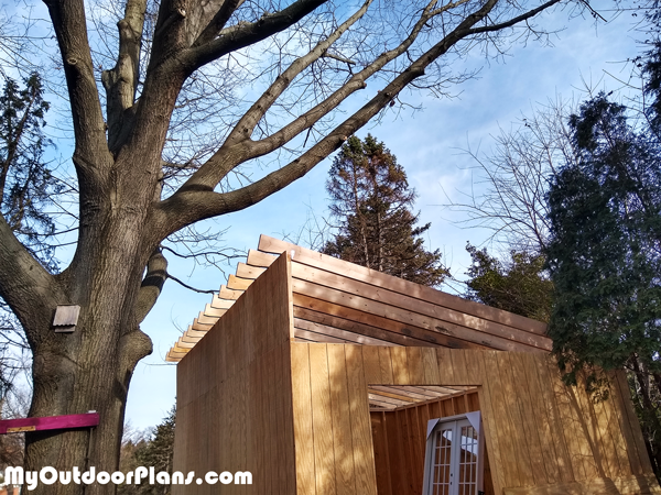 Fitting-the-rafters-to-the-16x20-lean-to-shed