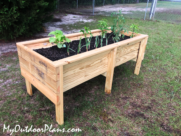 DIY-Off-the-ground-garden-planter