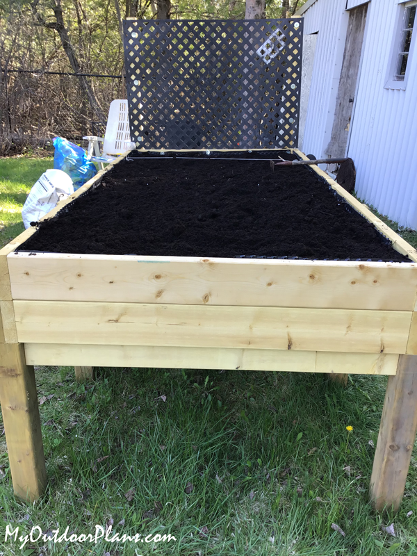 DIY Project - Large Raised Garden Bed