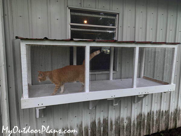 How-to-build-a-window-catio