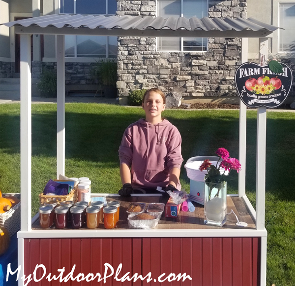 DIY Lemonade Stand with Roof