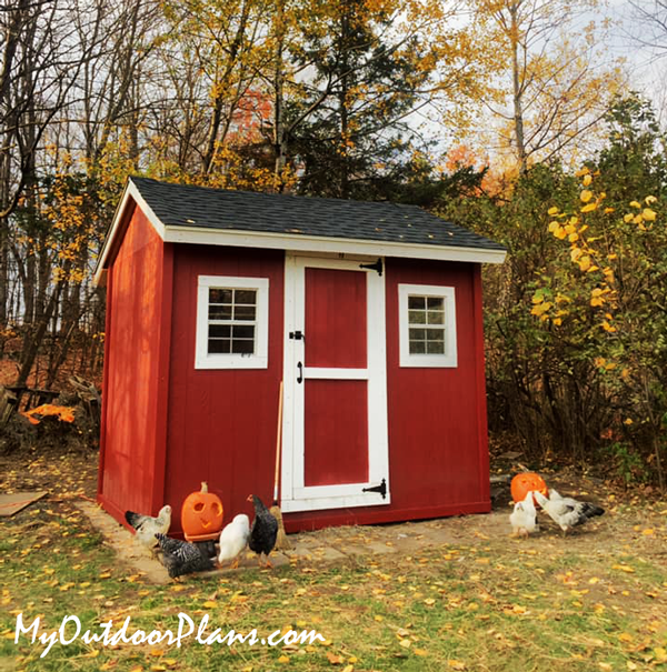 DIY 8x10 Gable Chicken Coop