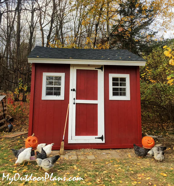 How-to-build-a-large-chicken-coop